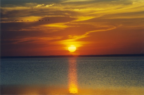 Currituck_sunset01