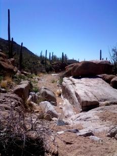Bajada Wash, Tucson, AZ